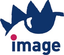Image Recorling Solutions, logo